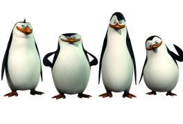 Kino – Tučňáci z Madagaskaru