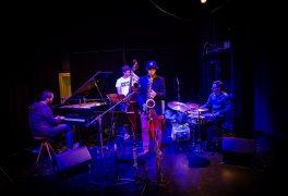 Ostrich quartet – fotoreportáž