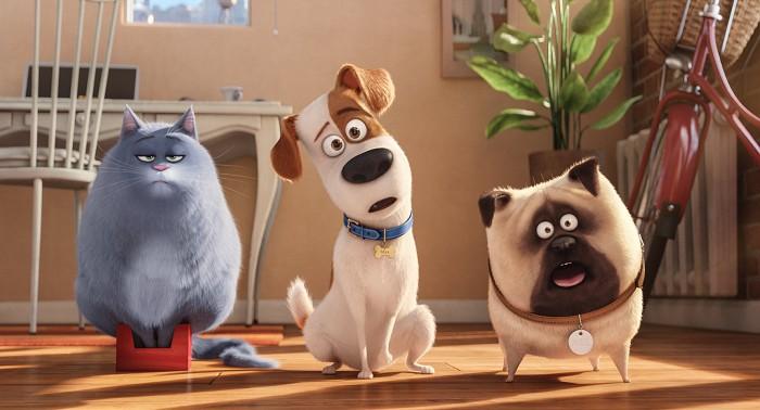 Kino – Tajný život mazlíčků