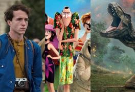 Kino – listopad 2018