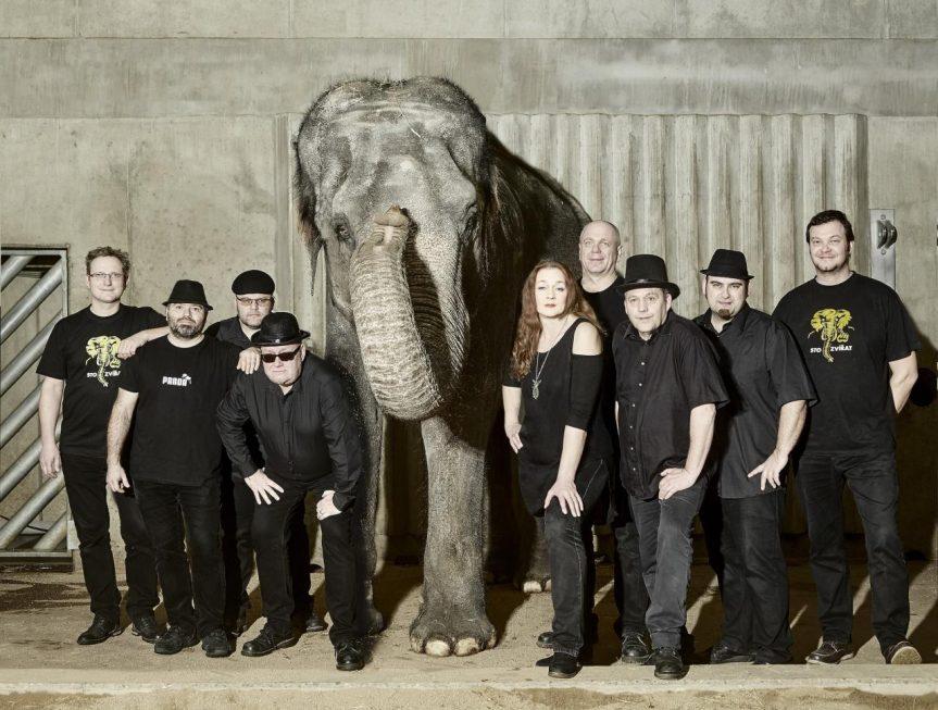 100 Zvířat a Schodiště – koncert