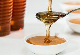 Novoměstské slavnosti medu aneb sladké zakončení léta