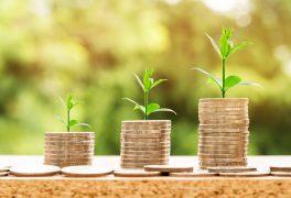 Výběrové řízení na pozici ekonoma/ekonomky